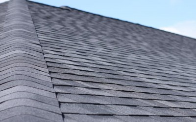 Shingle Roofing Options